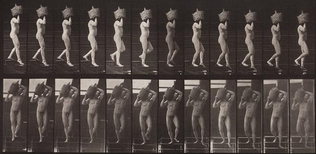 Eadweard_Muybridge_-_Animal_Locomotion,_Plate_136_-_Google_Art_Project