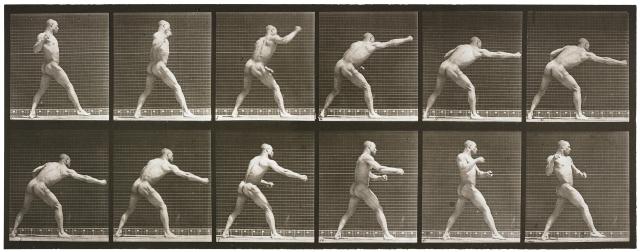 The Sports Show; Eadweard Muybridge; Animal Locomotion Plate 344 (Striking a blow); 1887