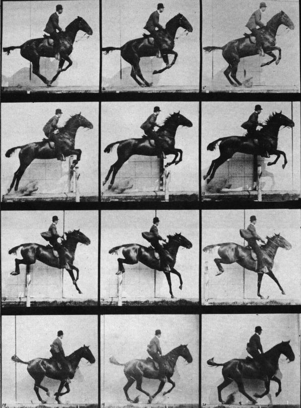 Muybridge_horse_jumping
