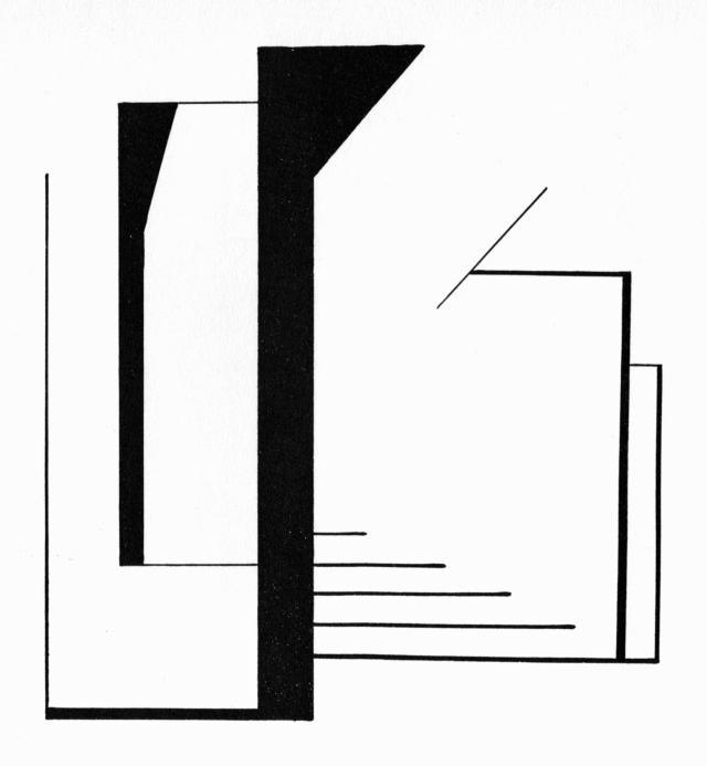 Viking_Eggeling_Horizontal-Vertikalorchester